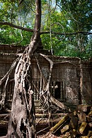 Ruins of Beng Mealea, Angkor, Cambodia