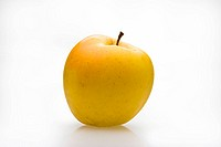 Yellow apple with graft