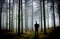 Silhouette of man in the forest
