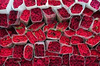 Wrapped bouquets of red roses sold in the flower market of Bogota, Colombia, 10 July 2010  South American countries Colombia and Ecuador are world lea...