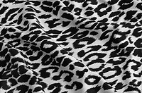 Animal print on fabric. White leopard, tiger. Look at my gallery for more backgrounds and textures