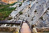 Mounted on the Rocks Wooden Bridge over the River Aragon