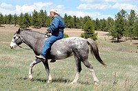 rider using natural horsemanship with Spanish Mustang