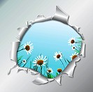 Floral background camomile flower in metallic hole. Vector illustration. EPS10