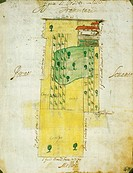 Map of farm homesteads and fields in Morghengo, Novara, drawing by Cabreo Guarischelli, 1611