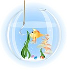 in a glass aquarium goldfish surprise stares at a large fishhook