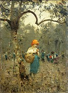 The olive harvest, 1873, by Francesco Paolo Michetti (1851-1929), oil on canvas, 48x35 cm.  Verona, Galleria Civica D'Arte Moderna E Contemporanea Di ...