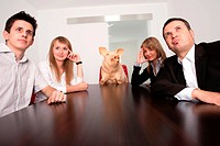 Business meeting, with boss _ pig, in office, conference room. Humour.