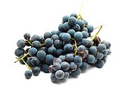 blue grapes isolated on white