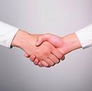 Two hands in Handshake _ Business Handshaking