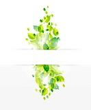 nature banner background, leaf design