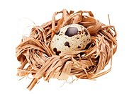 One quail eggs in the straw nest, isolated on white