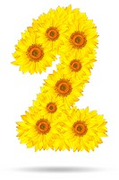 Number two made of sunflower