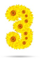 Number three made of sunflower
