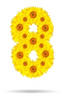 Number eight made of sunflower