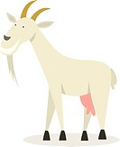 Vector illustration of goat
