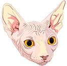 Close_up portrait, sketch a cat breed Sphynx with bright yellow eyes isolated on a white background. The Sphynx is a rare breed of cat known for its l...