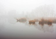 Lake with islands of rushes in a dense fog