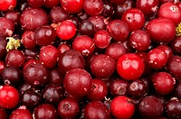 background of red ripe raw frozen cranberries