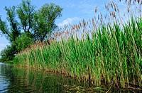 Biosphärenreservat Spreewald Deutschland, Biosphere reserve Spree Forest Germany,