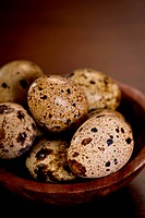 Delicate, beautiful Quail Eggs in a wood bowl on a wood table. Shallow dof.