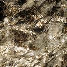 Minerals and rocks - granodiorite (Masino, Lombardy).