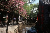 China - Yunnan - Lijiang (Old Town, UNESCO World Heritage List, 1997), capital of the Naxi (Nakhi) kingdom. A road along a canal.