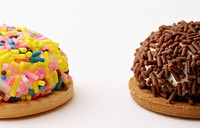 Macro shot of colorful marshmallow cookies with sprinkles on top