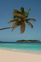 Maldivian island view
