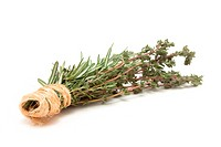 Bunches of Rosemary and Thyme bound with string against white background.