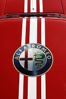 Alfa Romeo sticker on the rooftop of a rally car