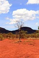 Outback landscape, Pilbara, Western Australia, Australia