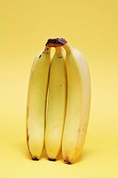 Bunch of Bananas on Yellow Background