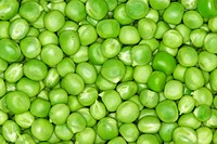 Abstract background: green peas