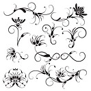 Decorative Floral Design Elements, editable vector illustration