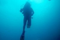 Scuba diver underwater, San Cristobal Island, Galapagos Islands, Ecuador