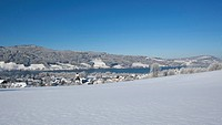 Austria, View of Zell am Moos with Irrsee Lake in background
