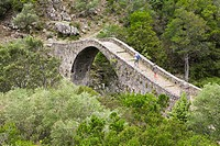 Old Genovese stone bridge over the River Porto near the village of Ota, Spelunca Gorges, Corsica, France, Europe