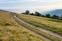 Carpathian Mountains Ukraine autumn evening landscape with country road.