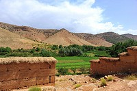 Landscape, river valley with fields in the High Atlas mountains, adobe brick walls covered with straw at front, Ait Bouguemez Valley, High Atlas Mount...