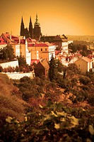 View on the Prague castle sepia toned