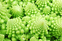 Closeup of a green romanesco vegetable