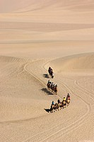 Was taken in dunhuang of china, a camel train in desert