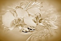 Orchid bouquet with wedding rings on pillow in sepia tones.
