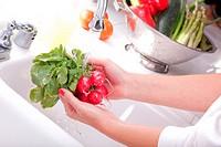 Woman Washing Radish in the Kitchen Sink.