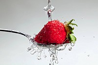 Strawberry being washed on a spoon, over a white background