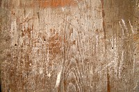 close up of old board showing wood grain