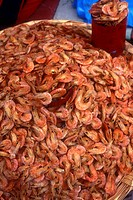 Lots of fresh local Gulf of Mexico shrimp.