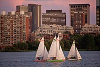 Sailboats with a city at the waterfront, Charles River, Back Bay, Boston, Massachusetts, USA