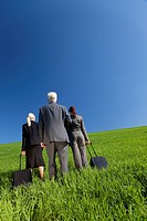 Concept shot showing three business executives, one male and two female, walking through a green field towards the horizon. Environmental, business an...